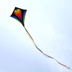 Cerf-volant eddy XL gradient