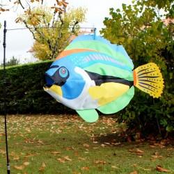 Girouette Manche à air Poisson flottant Peacock Wrasse