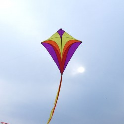 Cerf-volant eddy XL violet