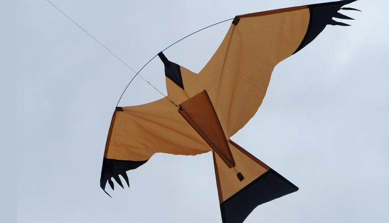 Cerf-volant oiseau