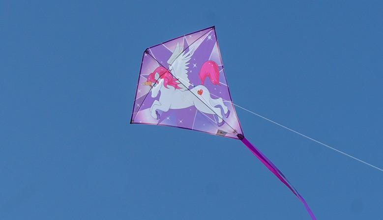 Cerf-volant  Licorne 1 poignée